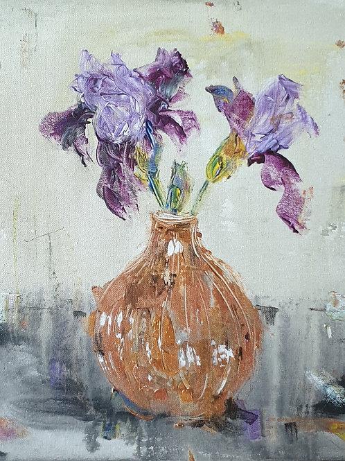 Iris on light
