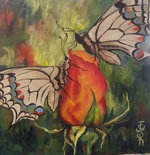 Orange butterfly 4