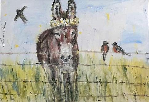 Donkey and birds