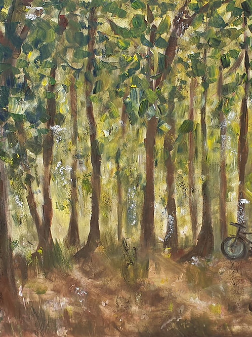 Cycling in the Forrest