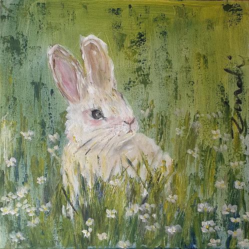 """Bunny in grass"""