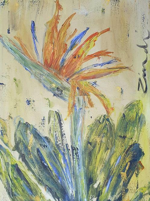 """Strelitzia on light"" 40 x 60cm"