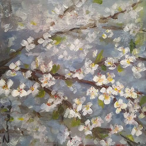 """""""Spring blossons"""""""