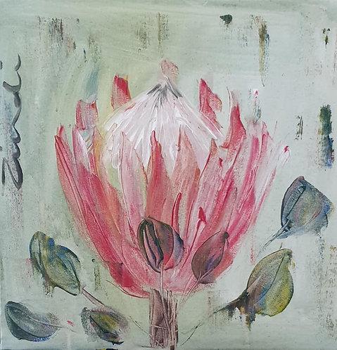 Protea on mint
