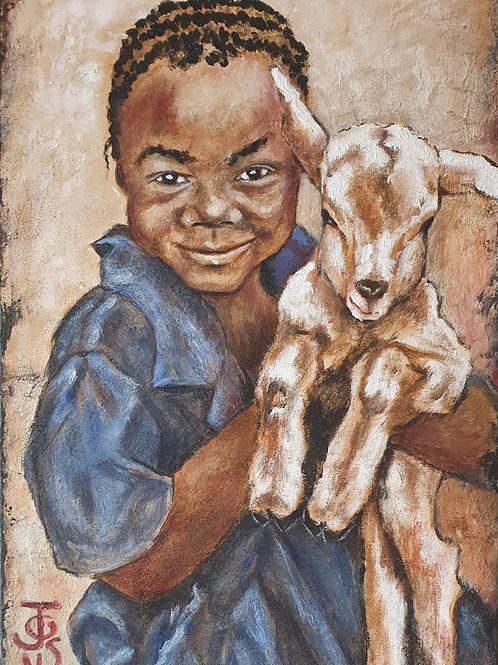 Lamb cuddles 2