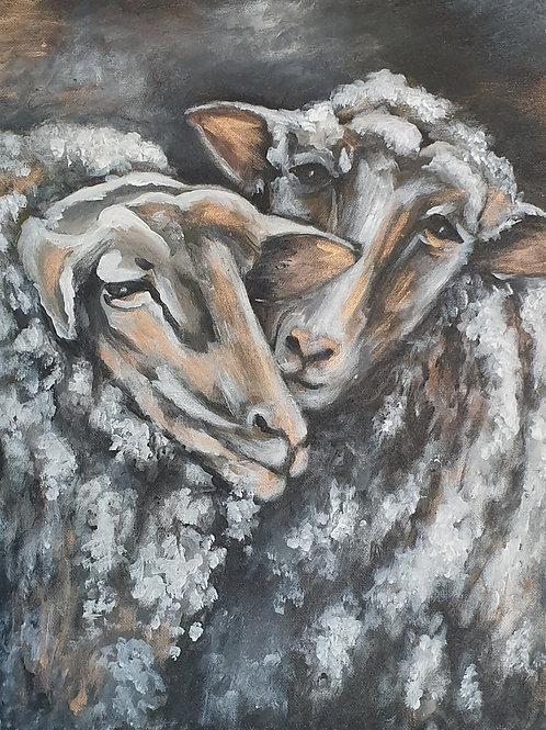 """Two sheep"""