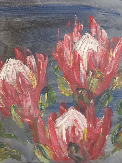 Pink Proteas on blue 1
