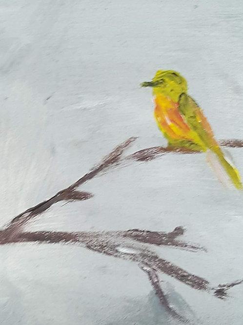 """""""Yellow bird"""""""
