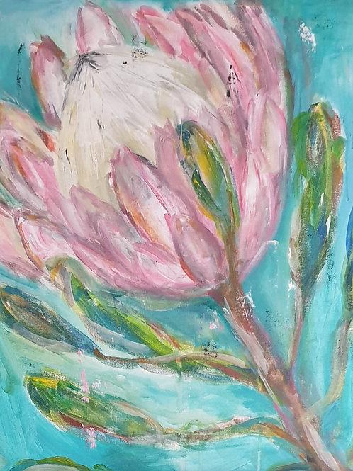 """""""Turquoise protea 4"""" 60 x 60cm"""