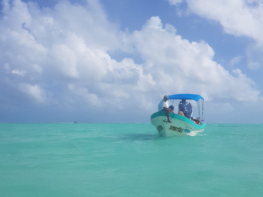 Punta Allen and Sian Kaan Biosphere Reserve- a piece of heaven that must be visited.