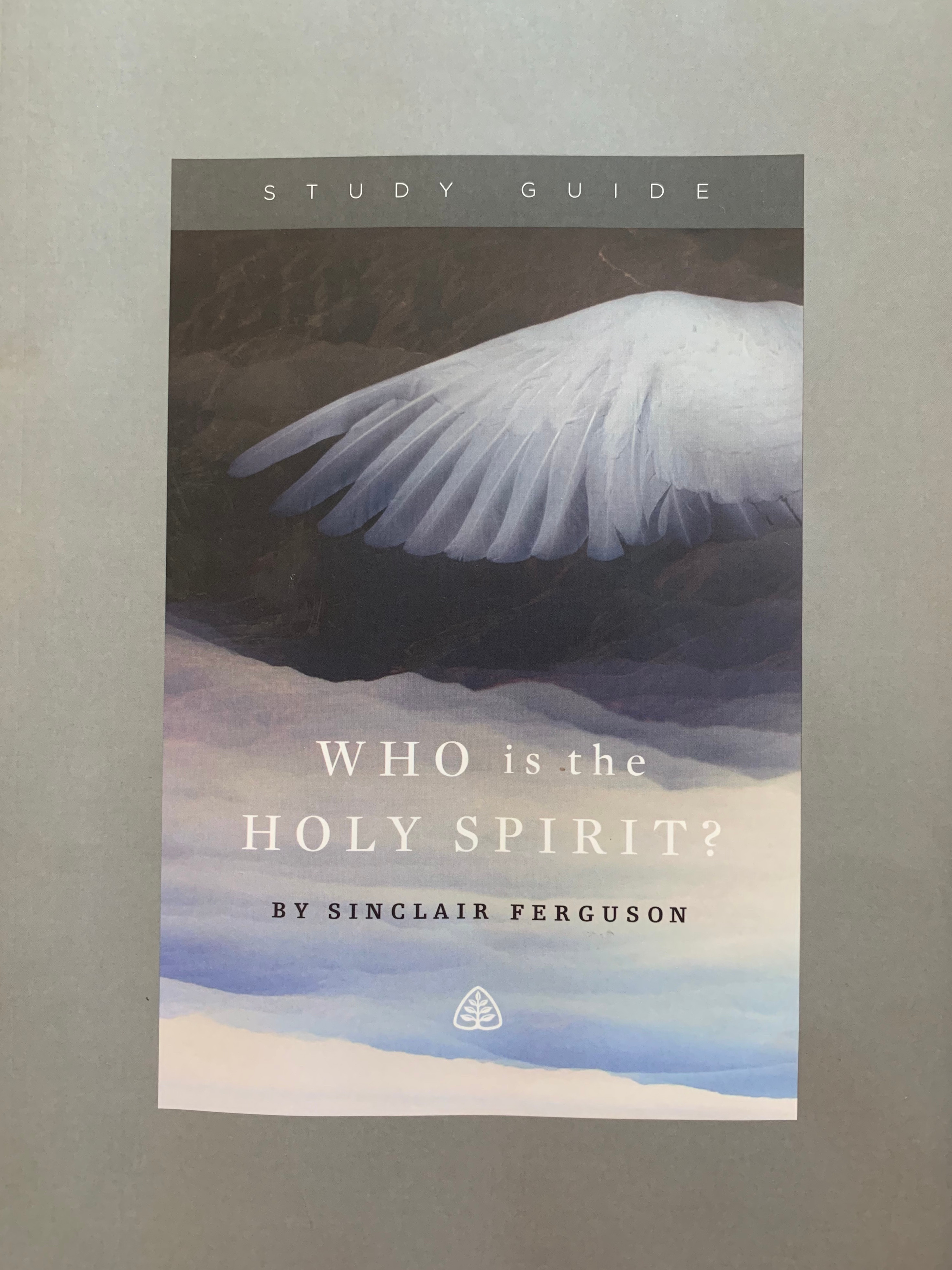 Who Is the HOLY SPIRIT Bible Study