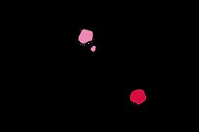 laune_logo.png