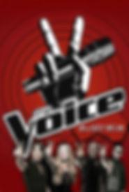 The voice.jpg