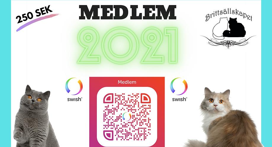 MEDLEM 2021.png