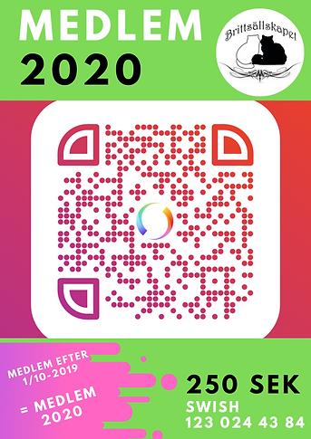 MEDLEM 2020.png