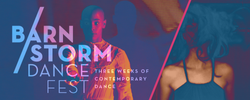2015 Barnstorm Digital Graphic