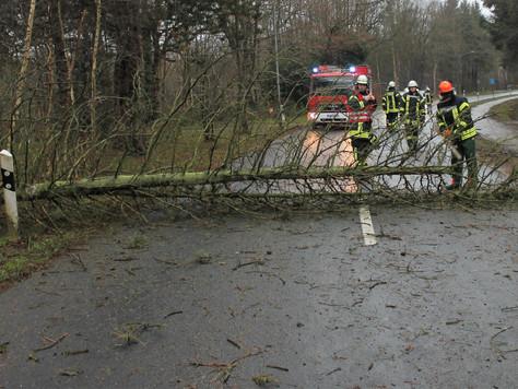 """Einsätze durch Sturmtief """"Burglind"""" im Landkreis Leer"""