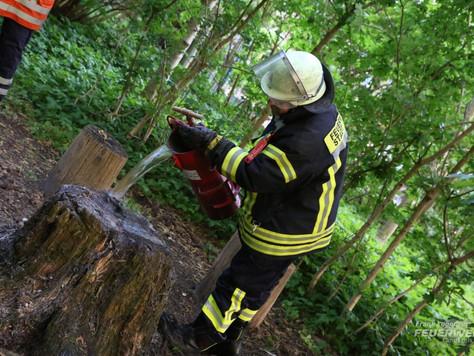 Baumstumpf in Leer brannte zum wiederholten Mal