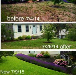 Mike Santos Irrigation: Before & After