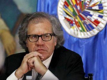 """Secretario de la OEA califica """"sin sentido"""" la participación de la MUD en próximos comicios electora"""