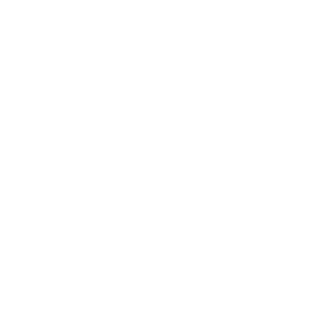 Currículo Lattes