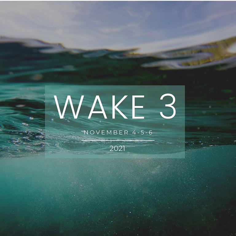 Wake 3