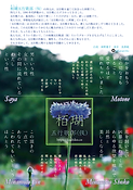 栢瑚フライヤーB2パターン_A5サイズ.png