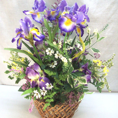 Mixed Iris Garden