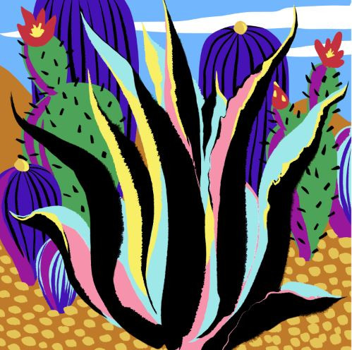 Maguey with flowers