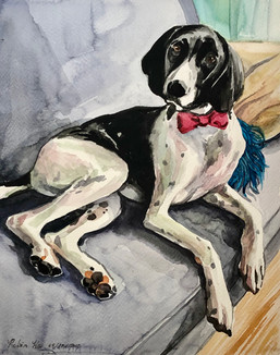 Dog Portrait Commission: Watercolor on paper