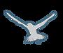 Balaviris 2021 - PERSO - OISEAU.png