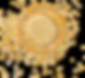 Balaviris 2021 - ronds - OR2.png