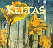 Keltas_LeGallois_v2.3_p.png