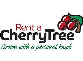 cherry tree xmas.jpg