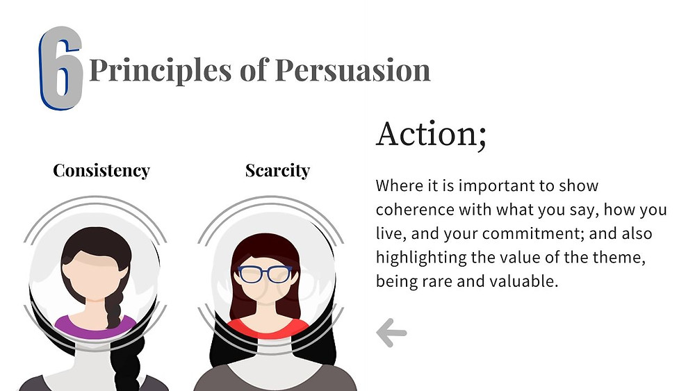 Principles of persuasion on starblog
