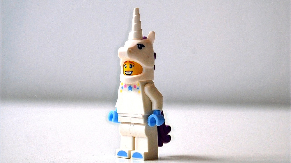What are they, what do they eat, how do they reproduce? Unicorn StartUps on  startblog