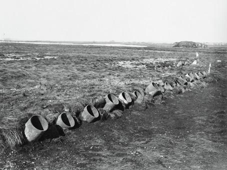 Field trials at Porton Down