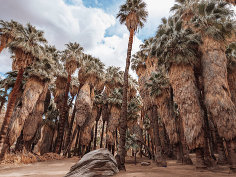 Best Stops on Southern California Road Trip