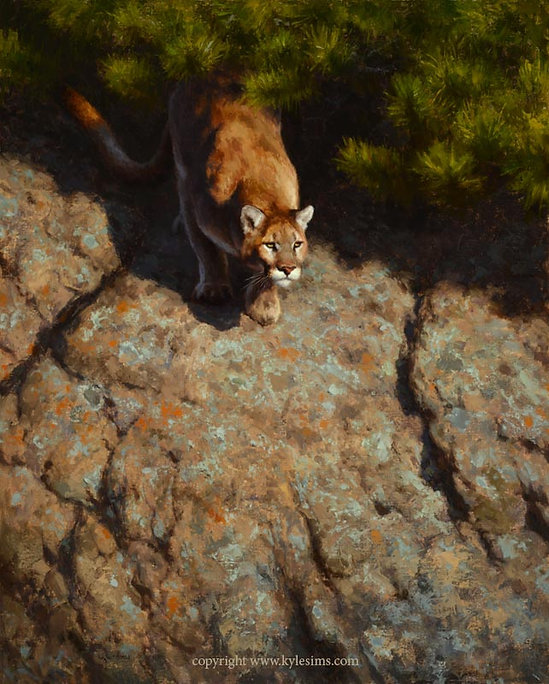 Original Mountain Lion Cougar Oil Painting for sale