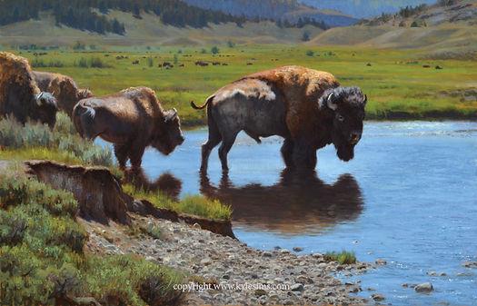 Original Bison in Yellowstone Painting