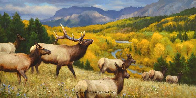 Rocky Mountain Elk original painting