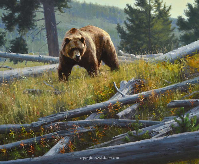 Original Grizzly Bear Oil Painting for sale