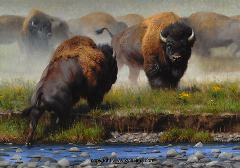Yellowstone Face Off - from $225