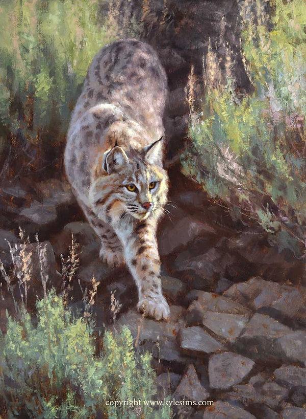 New Prix De West Bobcat Painting by Kyle Sims for sale