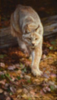 Original Canadian Lynx Painting