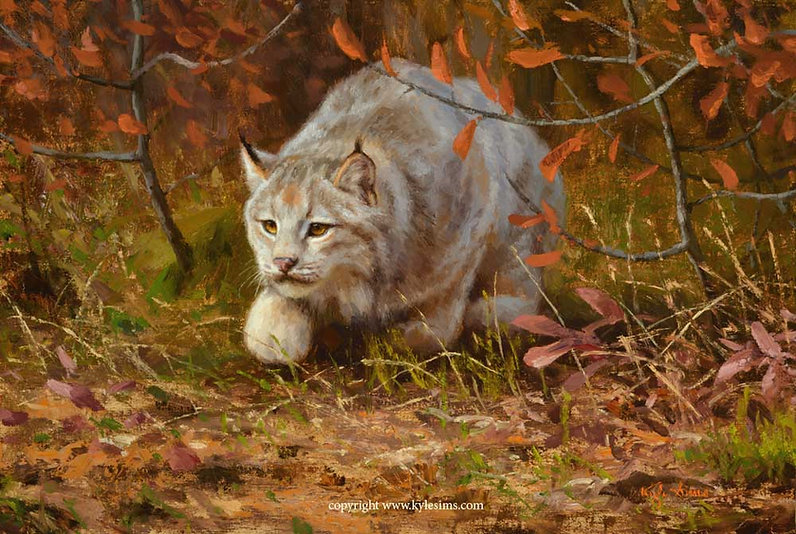 New Original Western Visions Lynx Painting by Kyle Sims for sale