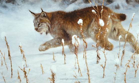 Original Lynx in Snow Painting