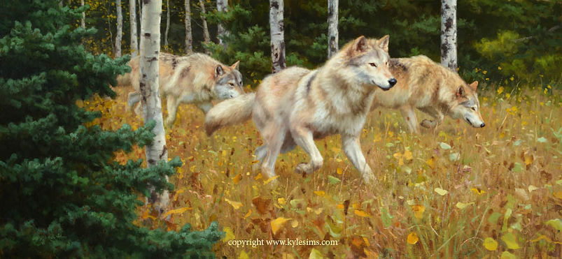 Original Wolf Oil Painting for sale