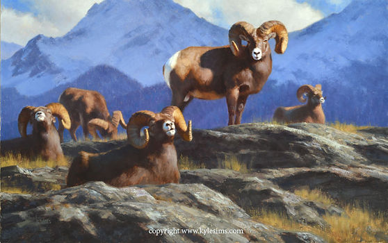 Original Bighorn Sheep with Mountains Painting