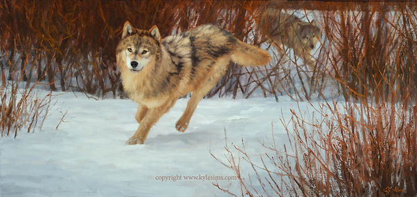 Original Wolf Painting